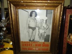 Andre el Gigante y Perro Aguayo Sr.